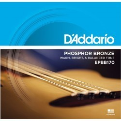 DAddario Fretted SET ACOUSTIC BASS EPB170 45-100