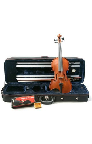 Palatino Violin Outfit, 4/4 VN650