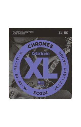 DAddario Fretted D'Addario Chrome Set ECG24