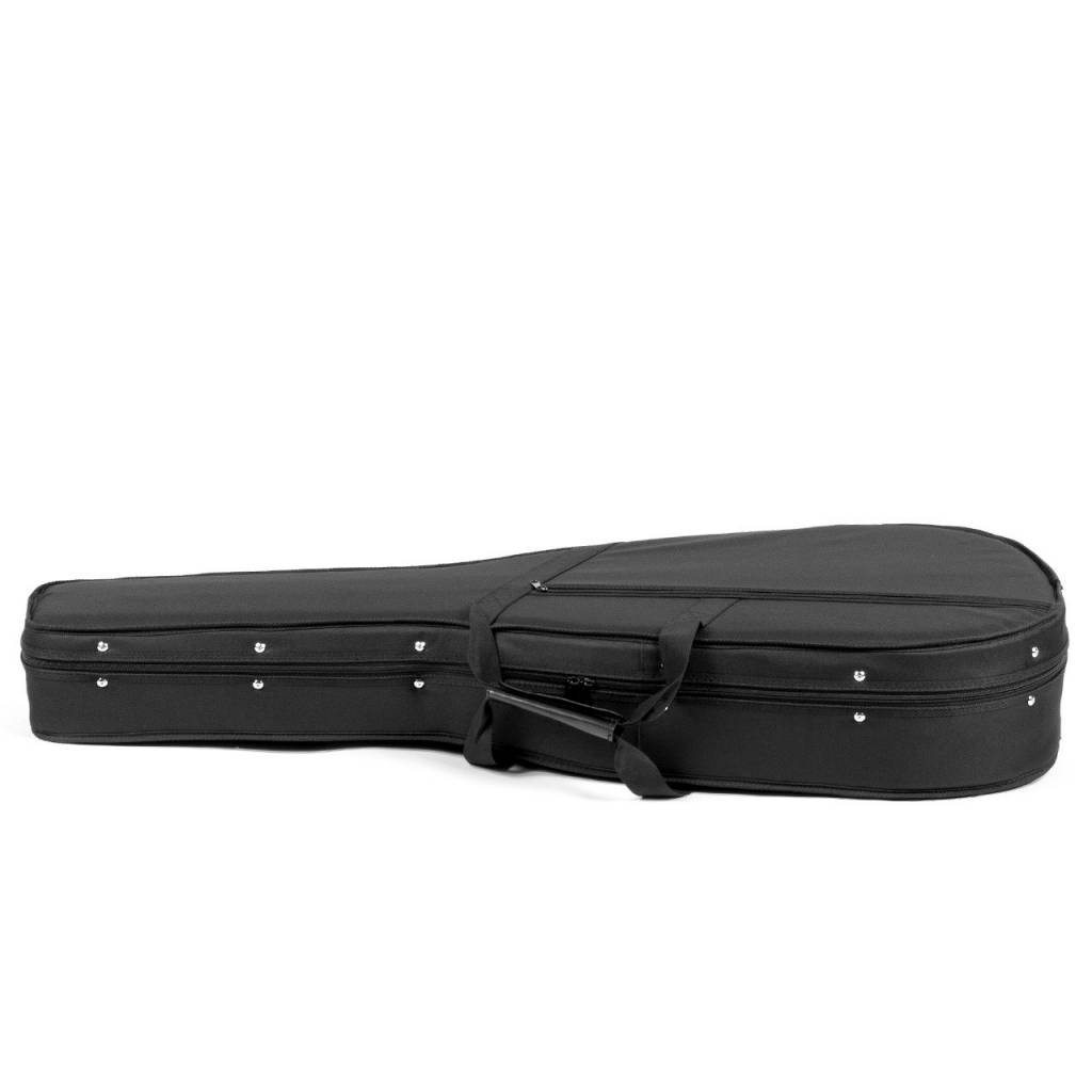Foam Guitar Case, Classical Guitar