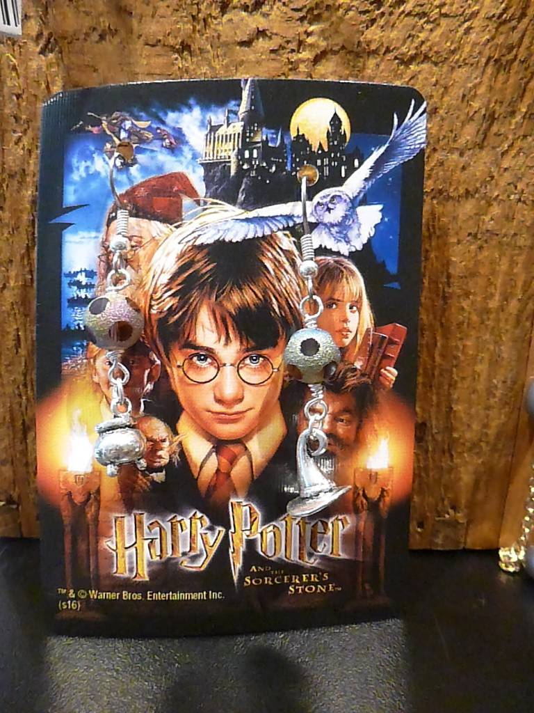 Harry Potter Frosted Glass Cauldren & Hat Earrings