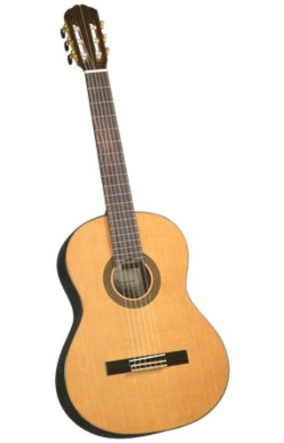 J. Navarro J. Navarro Classical Guitar Cedar Top NC-61 W/Case