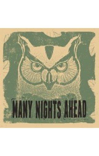 Many Nights Ahead (Progressive Bluegrass)