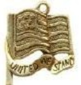 1 PC AGP 20x18mm United We Stand Flag Charm