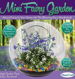 Glass Terrariums - Mini Fairy Garden