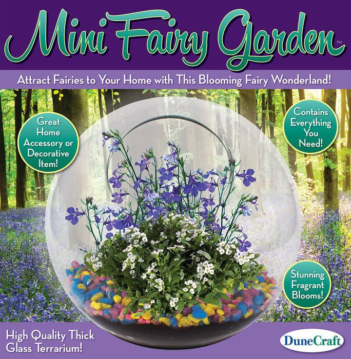Glass Terrariums - Mini Fairy Garden
