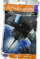 Astro Ice Cream:  Mint Chocolate Chip