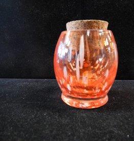 Glass Jar Dinosaur Egg