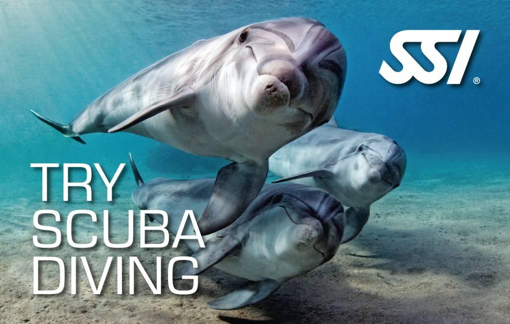 72 Aquatics Try Scuba Class