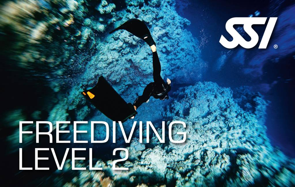 72 Aquatics Freediving Level 2 Course