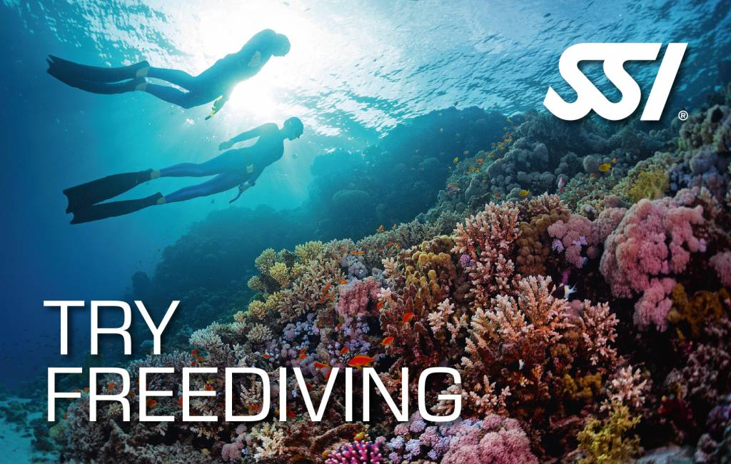 72 Aquatics Try Freediving