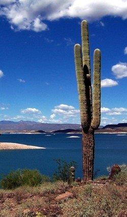 72 Aquatics Lake Pleasant Fun Diving Per Day