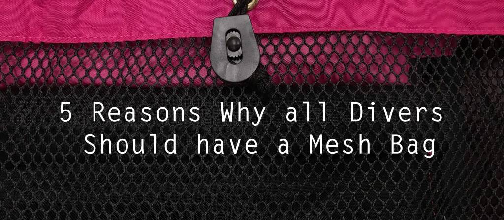 5 Reasons Why all Divers Should have a Mesh Bag