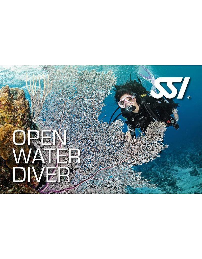 72 Aquatics Open Water Certification with San Carlos Trip