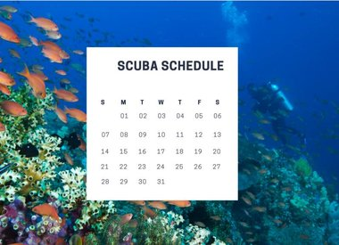 Scuba Certification Schedules