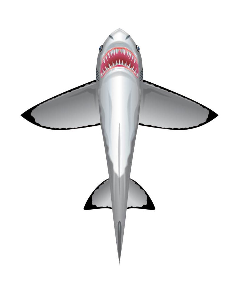 Wind N'Sun SEALIFE SHARK KITE