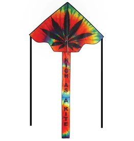 In The Breeze HIGH AS A KITE FLY-HI KITE 45""
