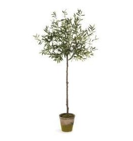 Staging Olive Tree 69""