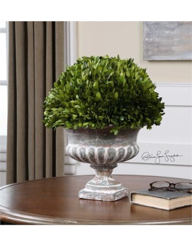 Garden Urn Boxwood