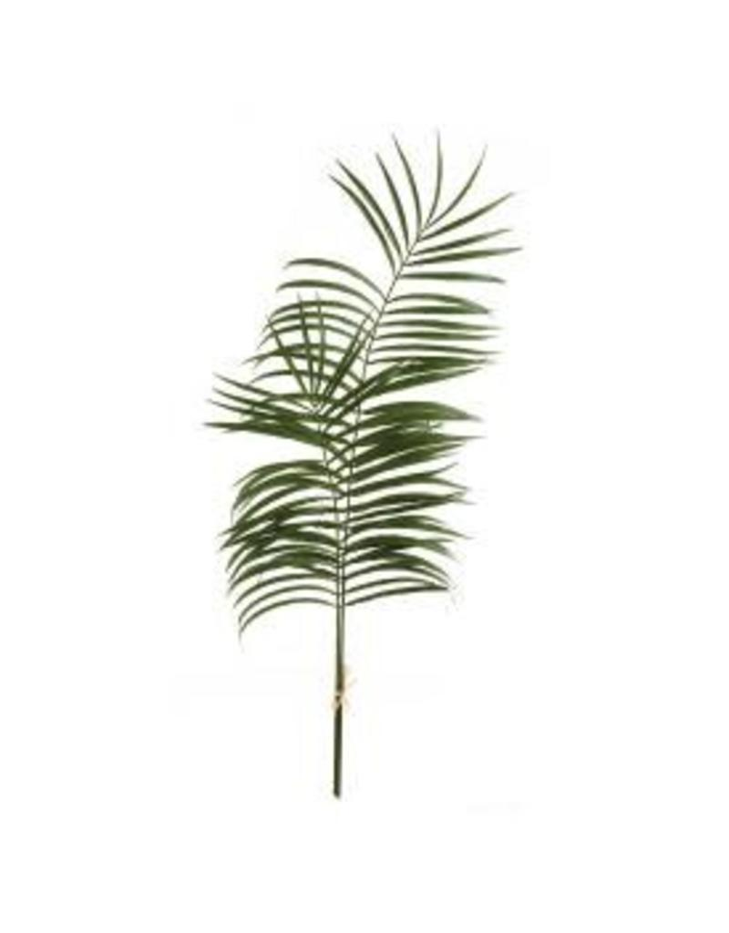 Palm Leaf Branches
