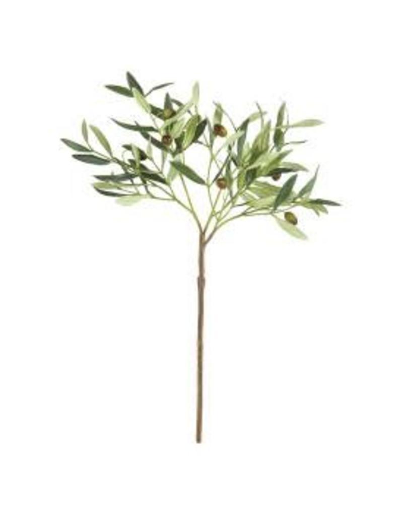 Olive Stem w/ Olives