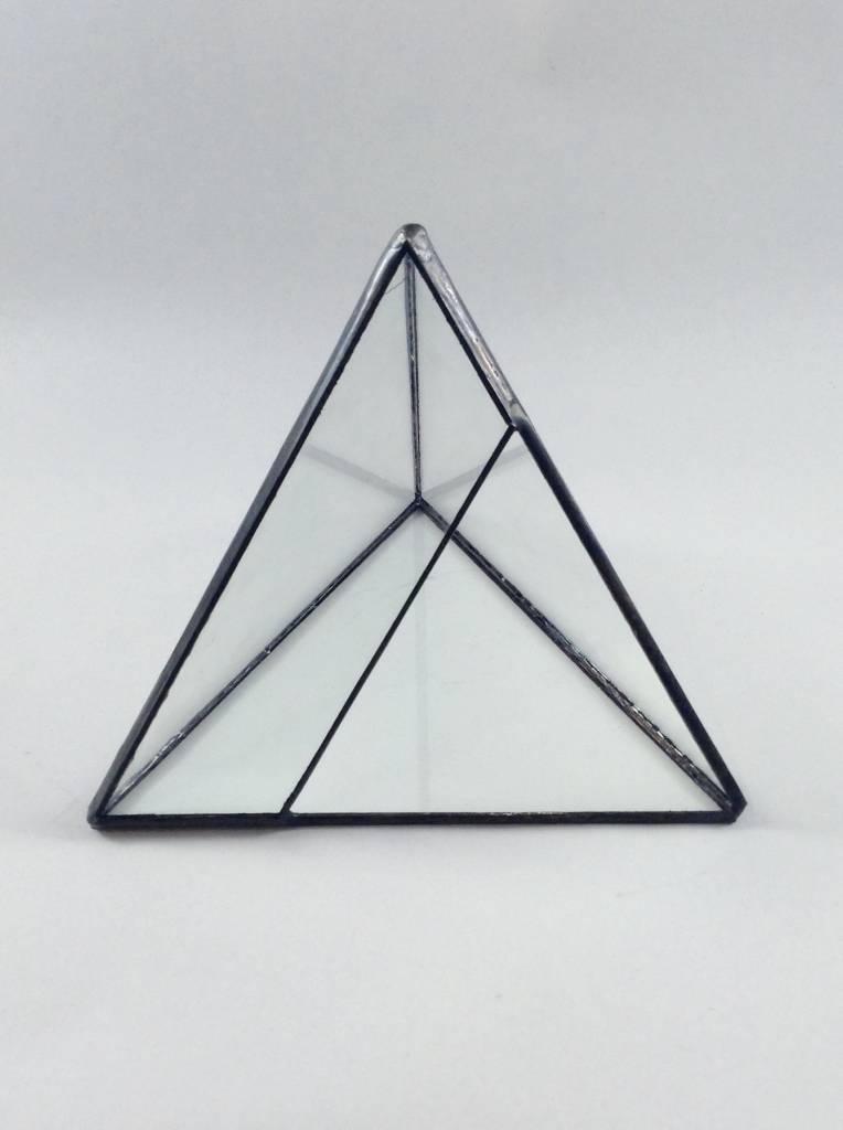 Geometric Terrarium