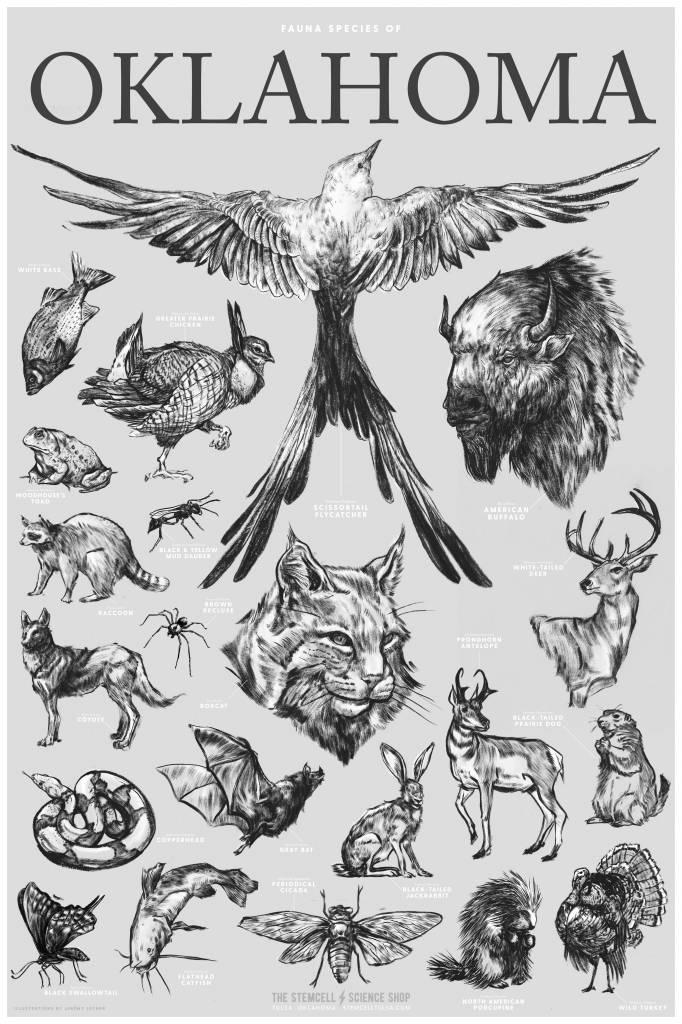 Oklahoma Wildlife Chart