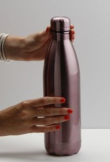 25 oz. Metallic Stainless Steel Bottle - Plum