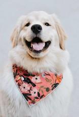Aloha Dog Bandana - Large