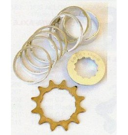 Conversion Kit, Single speed 16 tooth, cro mo drive ring
