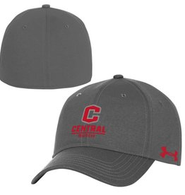 UA UA Gray Closure Cap 3D C