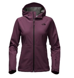 The North Face W APEX FLEX GTX JACKET