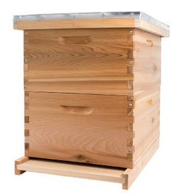 Bee Thinking Cedar Beehive Kit (Deep)