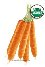 Botanical Interests Carrot Scarlet Nantes Org