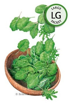 Botanical Interests Baby Greens Superfoods