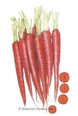 Botanical Interests Carrot Atomic Red