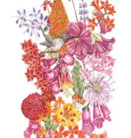 Botanical Interests Flower Mix Hummingbird Haven