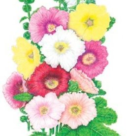 Botanical Interests Hollyhock Happy Lights