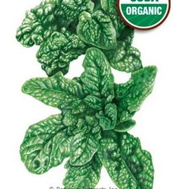 Botanical Interests Spinach Bloomsdale Org