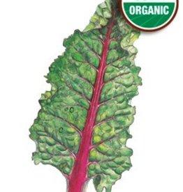 Botanical Interests Swiss Chard Ruby Red Org