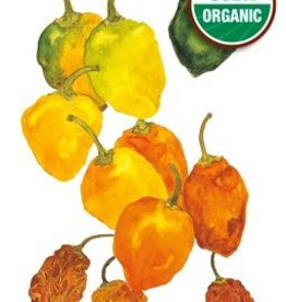 Botanical Interests Pepper Chile Habanero Org