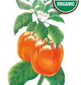 Botanical Interests Pepper Sweet Cal Wonder Orange Org