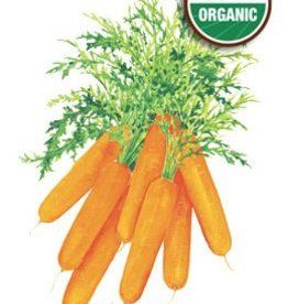 Botanical Interests Carrot Baby Little Finger Org