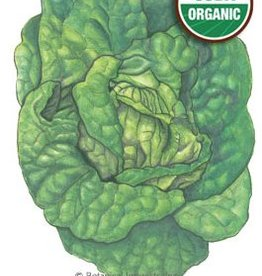 Botanical Interests Lettuce Butterhead Buttrcrunch Org