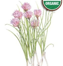 Botanical Interests Chives Common Org