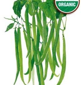 Botanical Interests Bean Bush Tavera Org