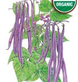 Botanical Interests Bean Bush Royal Burgundy Org