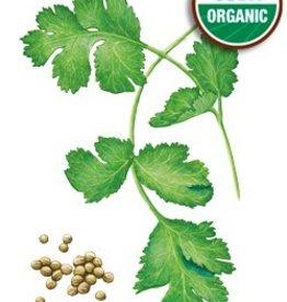 Botanical Interests Cilantro / Coriander Org
