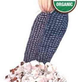 Botanical Interests Corn Popcorn Dakota Black Org