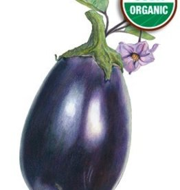 Botanical Interests Eggplant Black Beauty Org